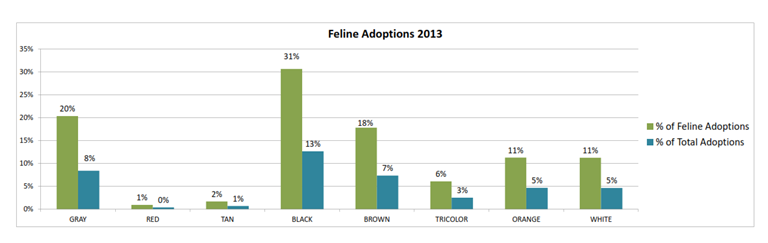 Total cat adoptions for 2013, including black cats
