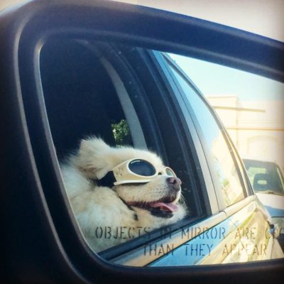 Objects in Mirror are cooler than they appear
