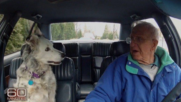 Dr. Pilley and Chaser in a Car