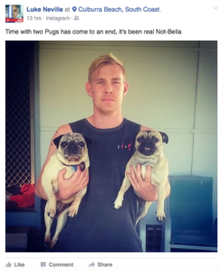 Luke Neveille lost his Pug - and found another!