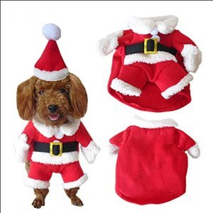 Nacoco Christmas Suit for Dogs from Unique Dog Gifts Post