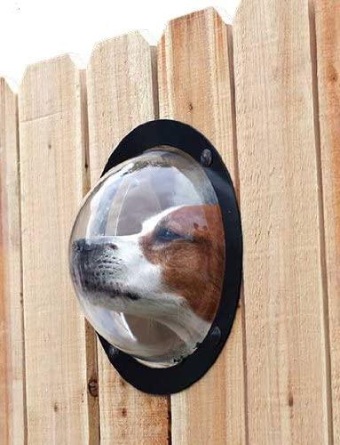 Pet Peek Fence Window Unique Dog Gift