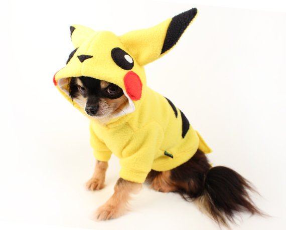Pikachu Dog Costume from Unique Dog Gifts Post