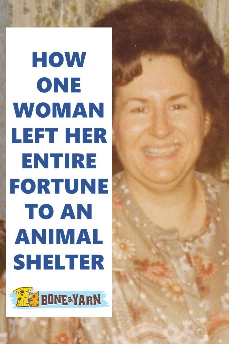 Cover Slide for How one woman left her fortune to an animal shelter