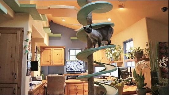 Spiral slide in Peter Cohen's Kitchen