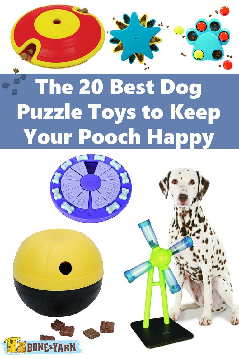 20 Best Dog Puzzle Toys to Keep Your Pooch Happy