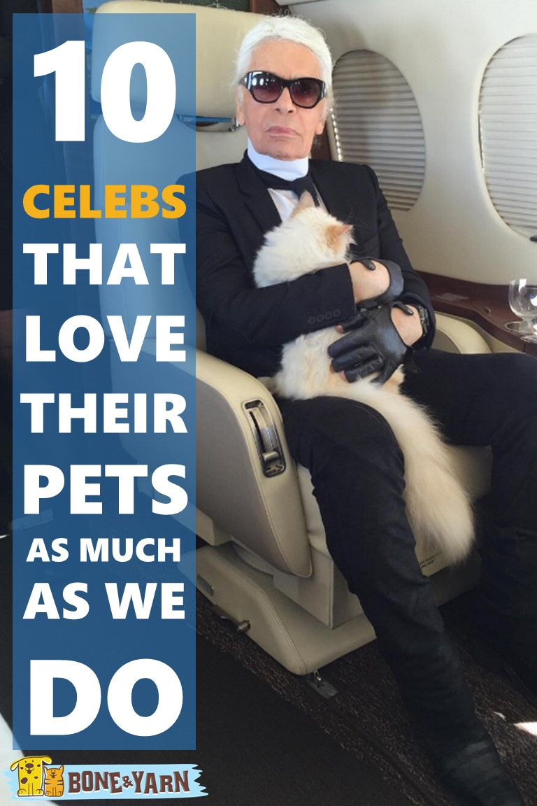 10 Celebs That Love Their Pets as Much as We Do
