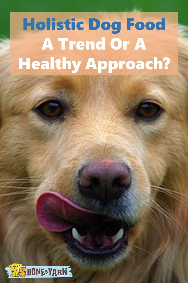 Holisitc Dog Food Cover Photo