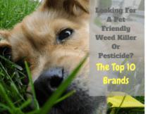 pet friendly weed killer