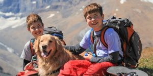 Best dog breeds for kids match every personality type