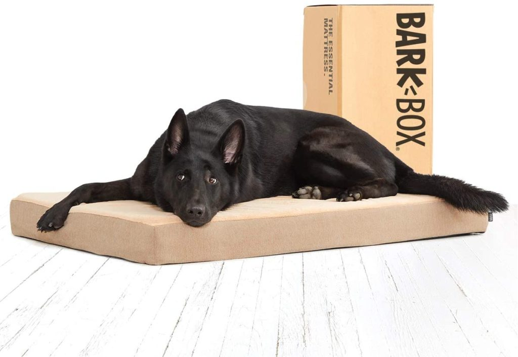 Bark Box Orthopedic Gel Memory Foam Dog Bed for Large Dogs
