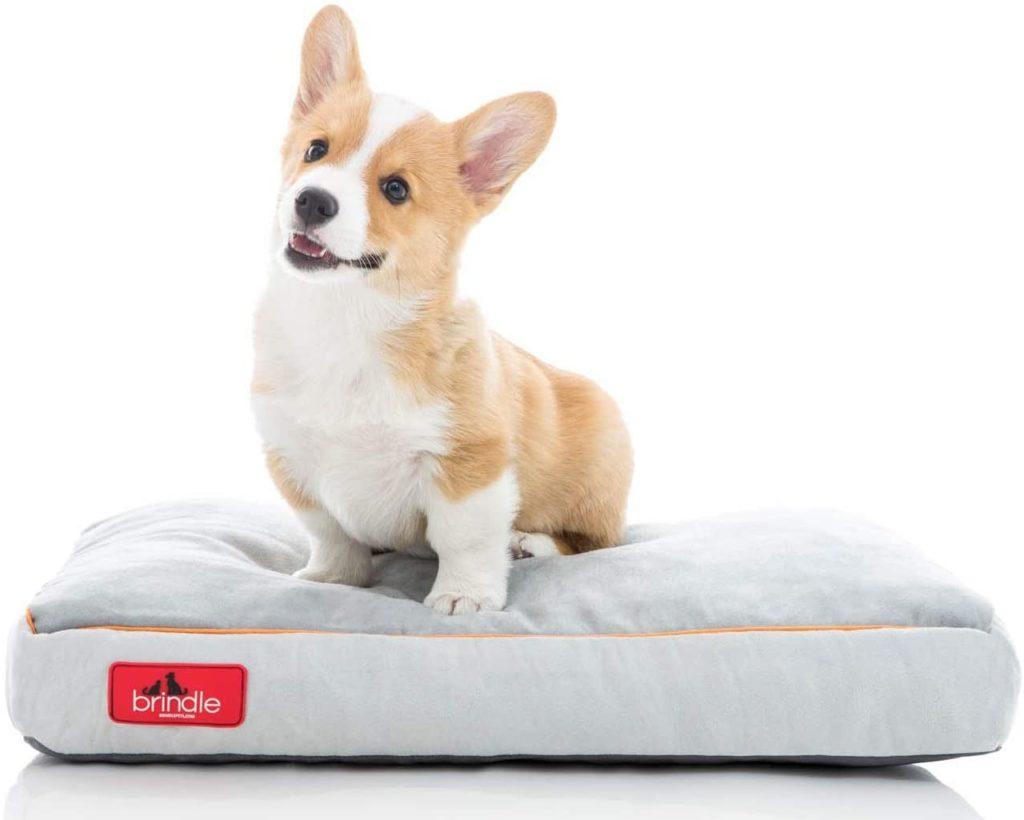 Brindle Soft Memory Foam Dog Bed