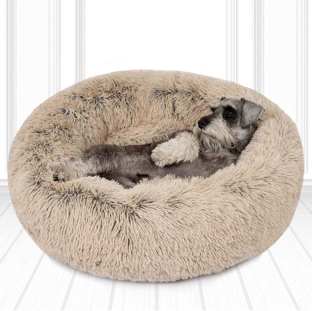 Friends Forever Washable Donut Dog Bed