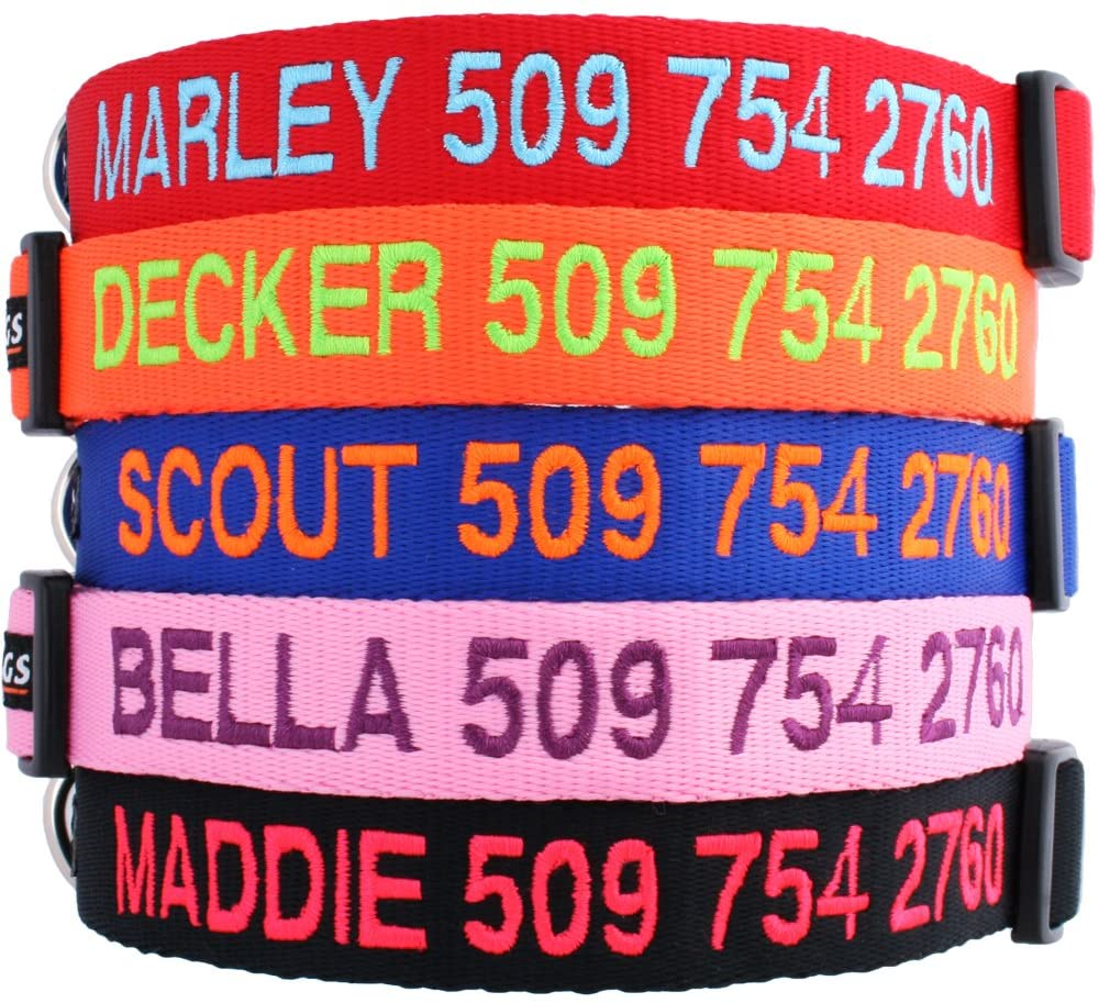 GoTags Personalized Collars