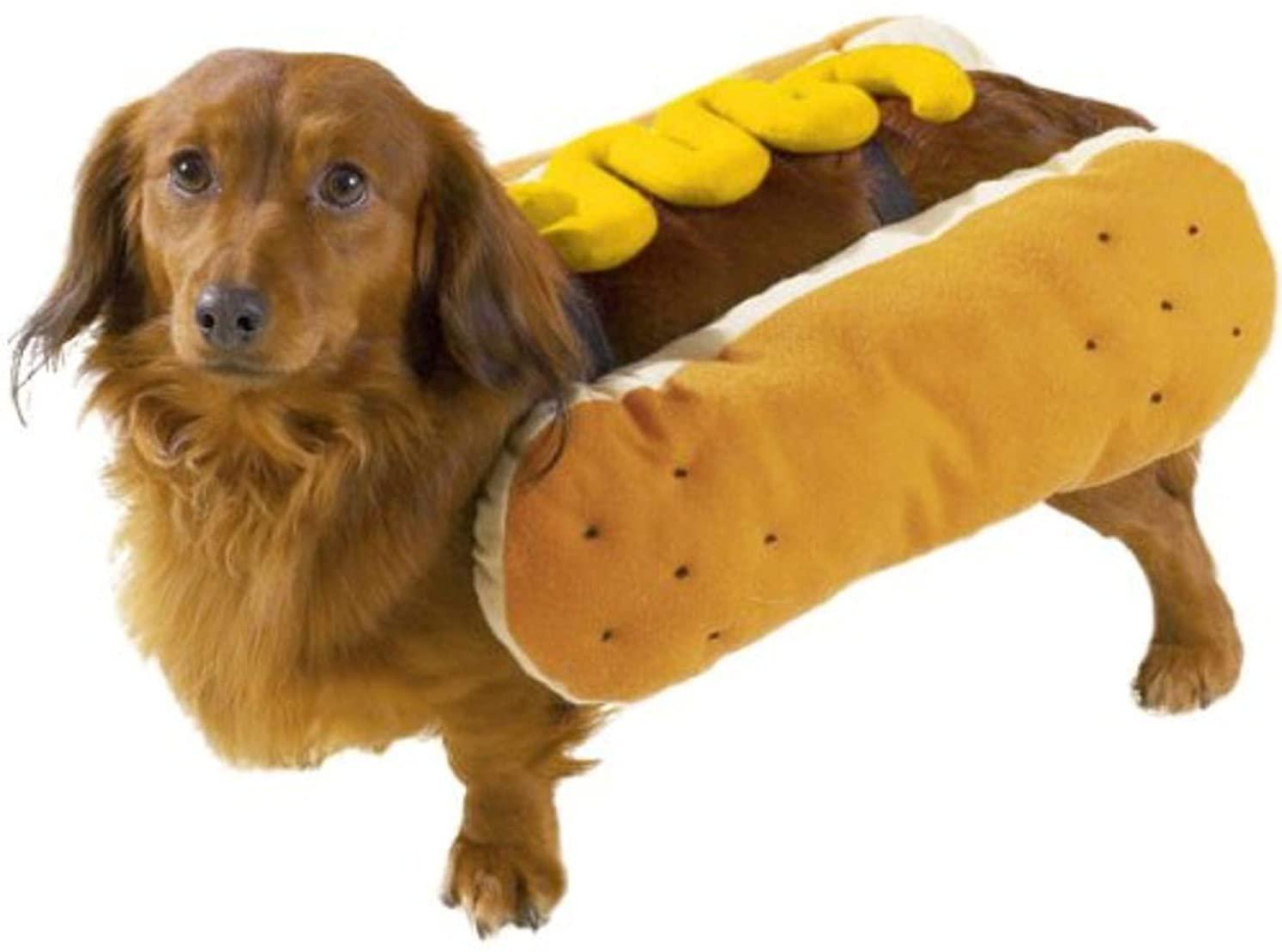 Hot Diggity Dog with Mustard