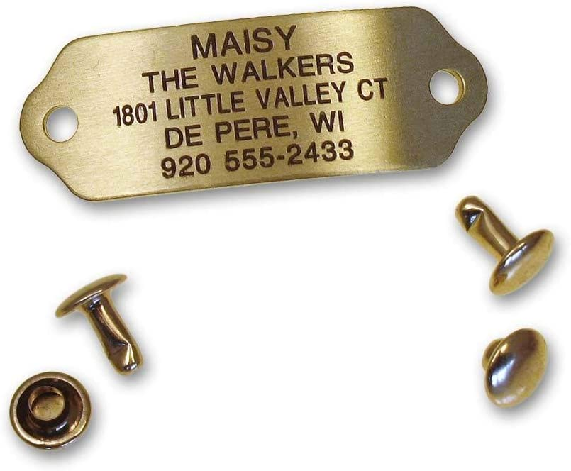 Lucky Pet River-On Pet ID Tag