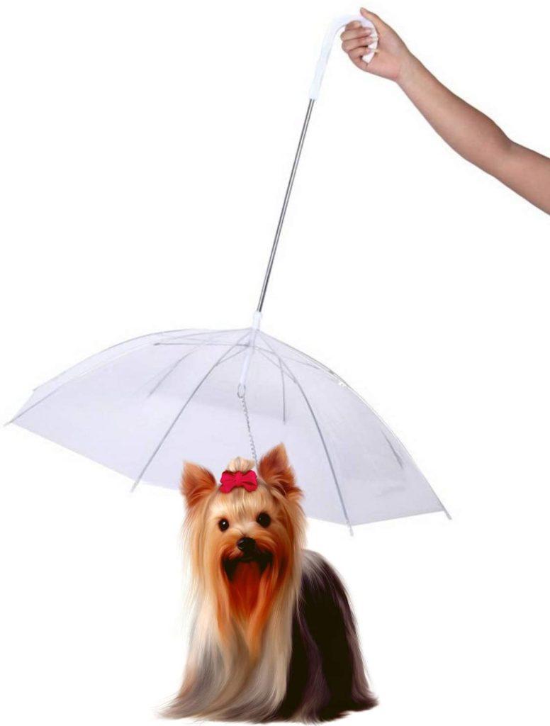 Perfect Life Idea Umbrella for Dogs