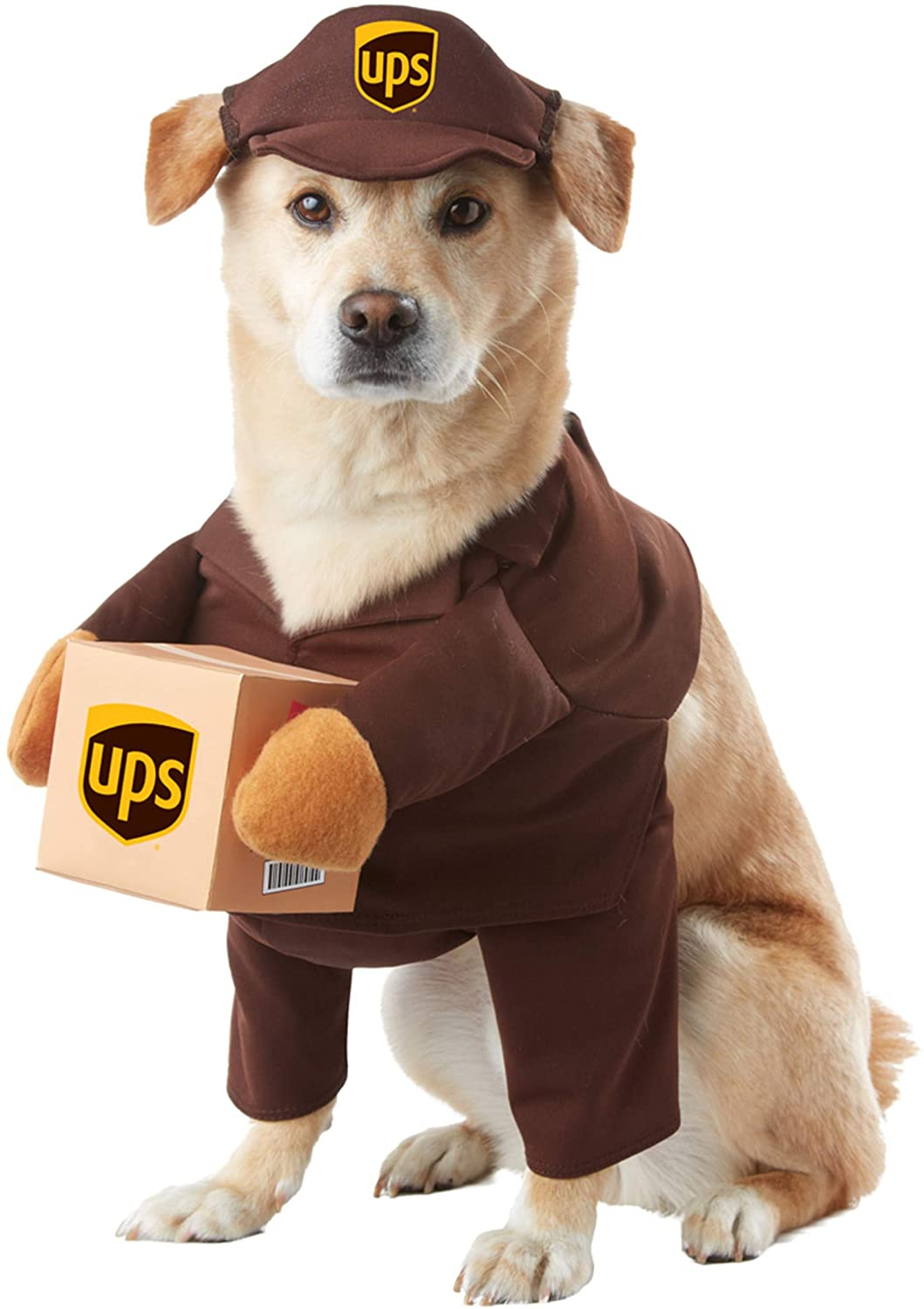 UPS Delivery Person Dog Halloween Costume