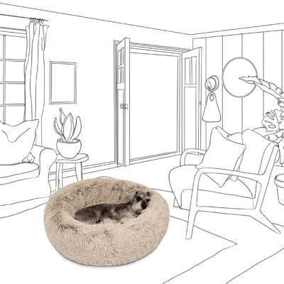 Washable dog beds keep a room smelling fresh