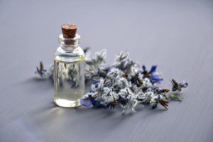 Essential oils can pose hazards to dogs