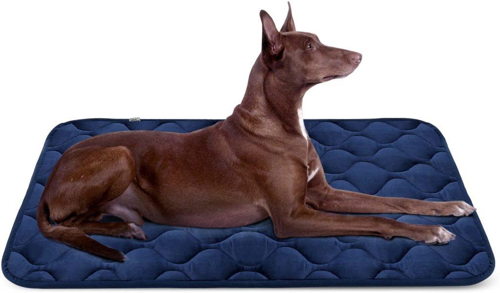 Hero Dog Washable Dog Mat