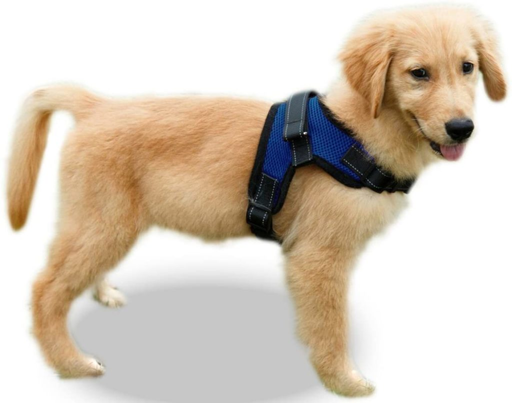 Copatchy No-Pull Reflective Adjustable Dog Harness with Handle