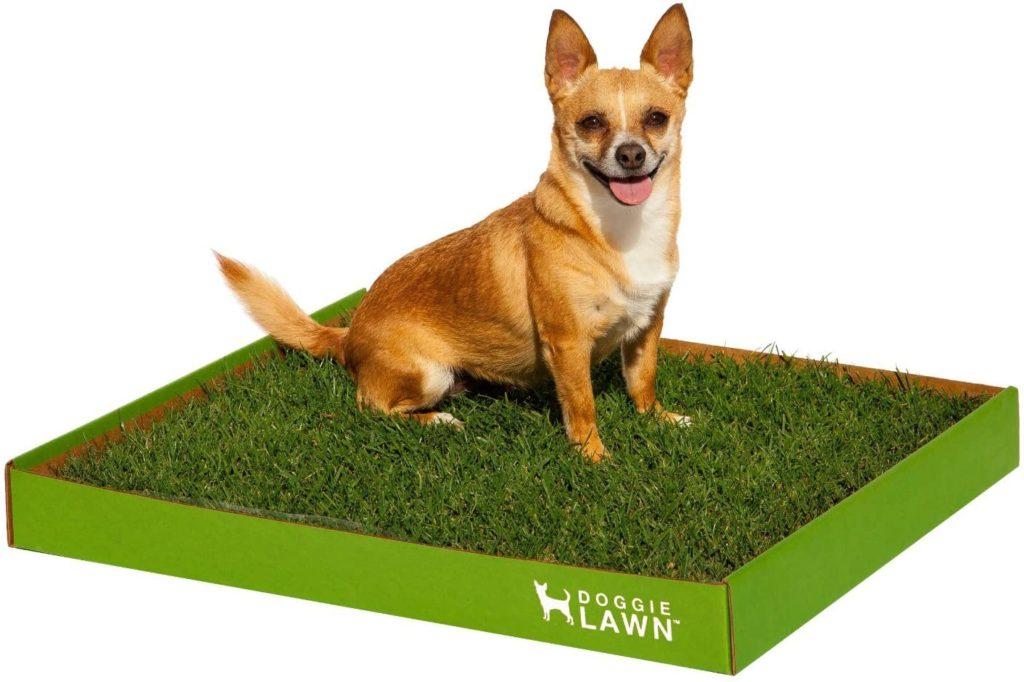 Doggie Lawn Dog Grass Pad