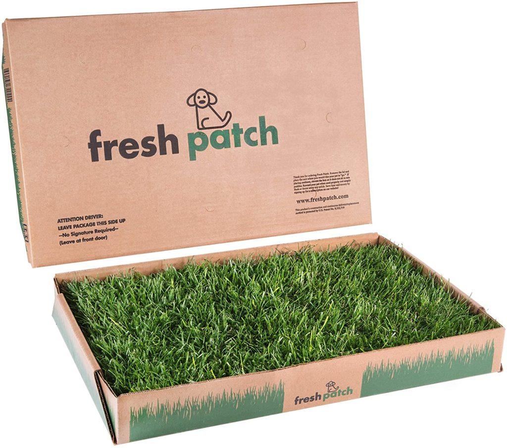 Fresh Patch Dog Grass Pad