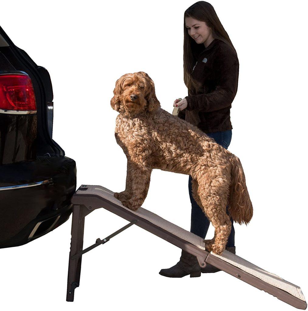 PetGear Free-Standing Ramp for Pets
