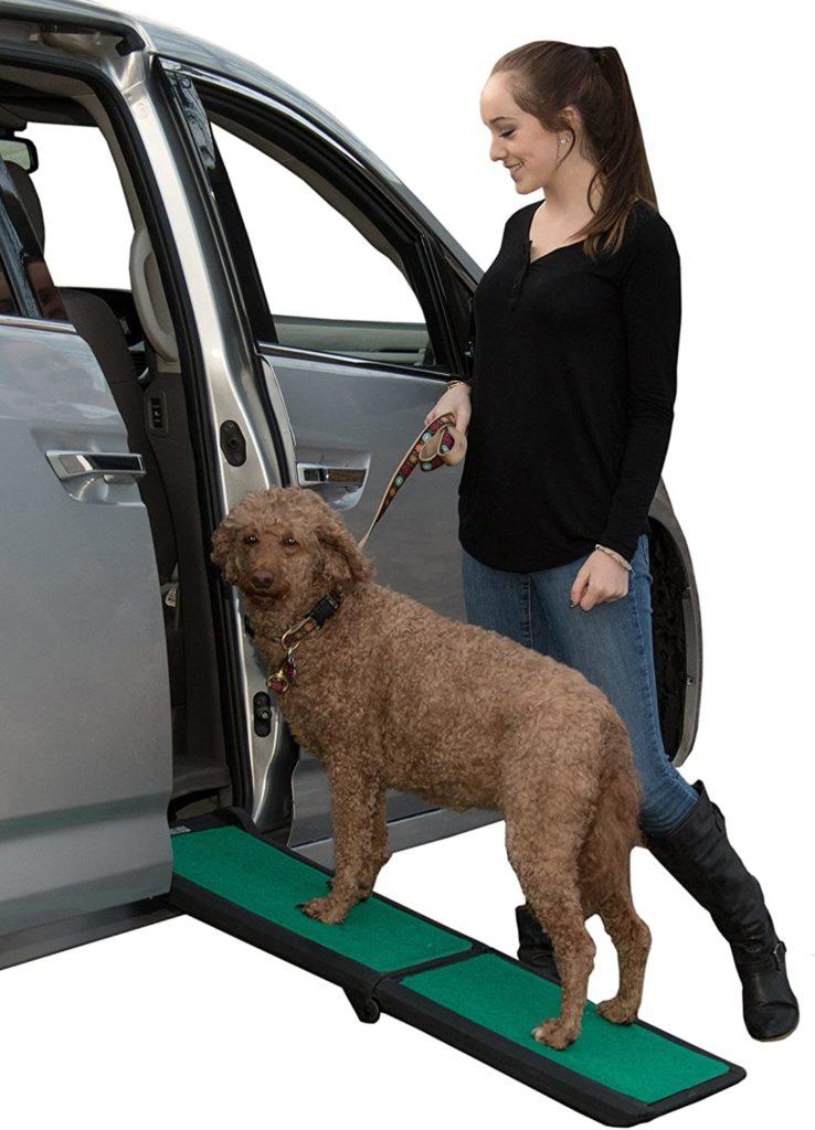 PetGear Travel Lite Dog Ramp
