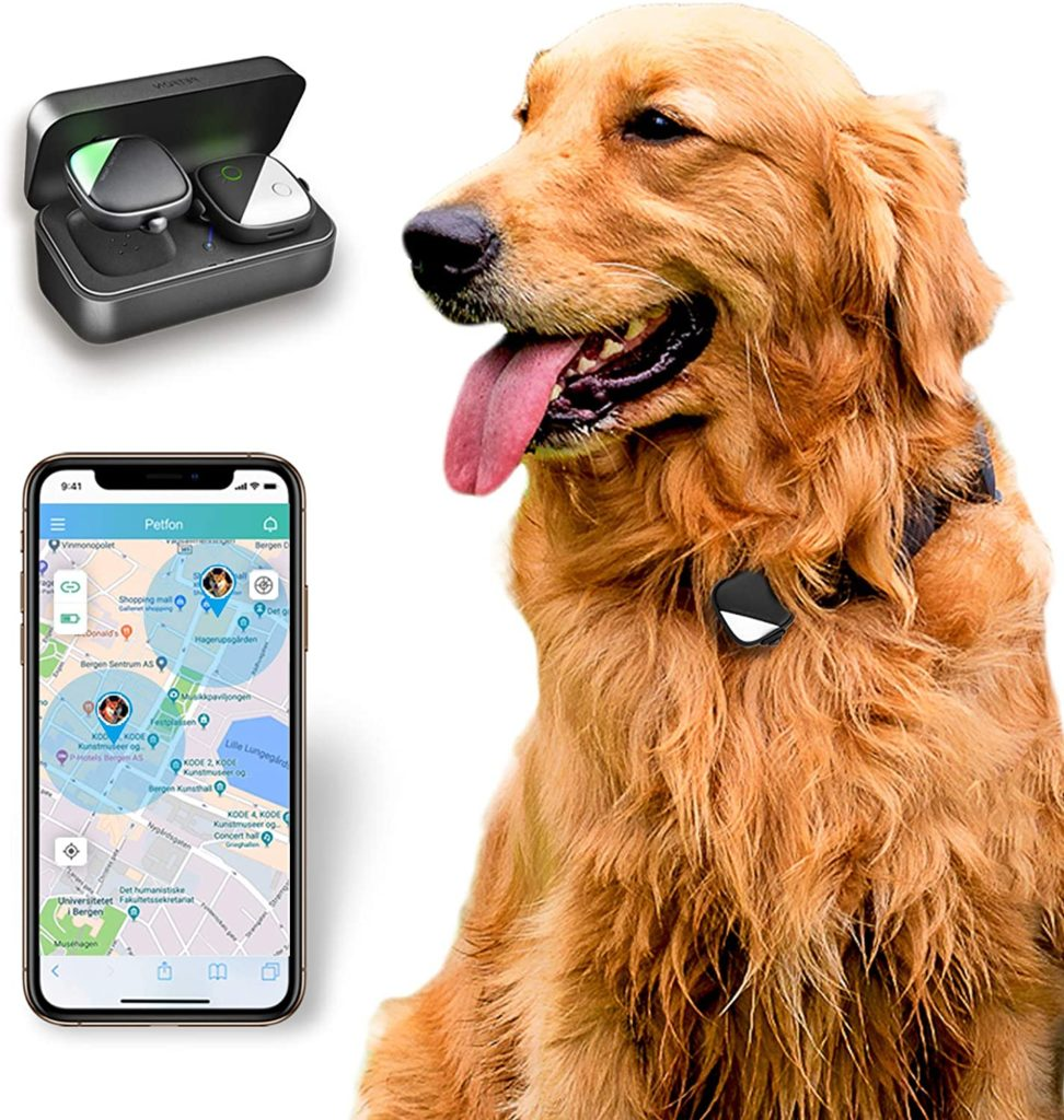 PetFon Dog GPS Tracker