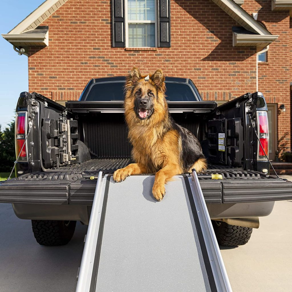 PetSafe SolvIt Extra-Long Telescoping Dog Ramp