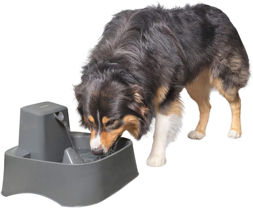PetSafe 2-Gallon Big Dog and Cat Fountain