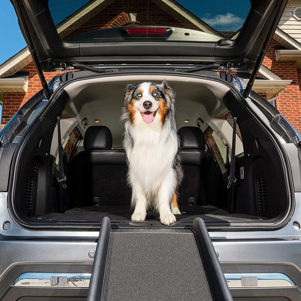 PetSafe SolvIt Bi-Fold Dog Ramp