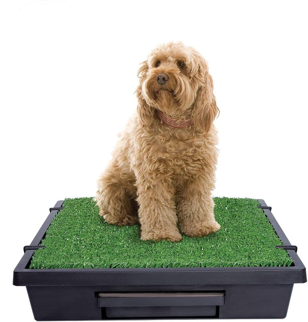 PetSafe Portable Pet Loo Dog Grass Pad