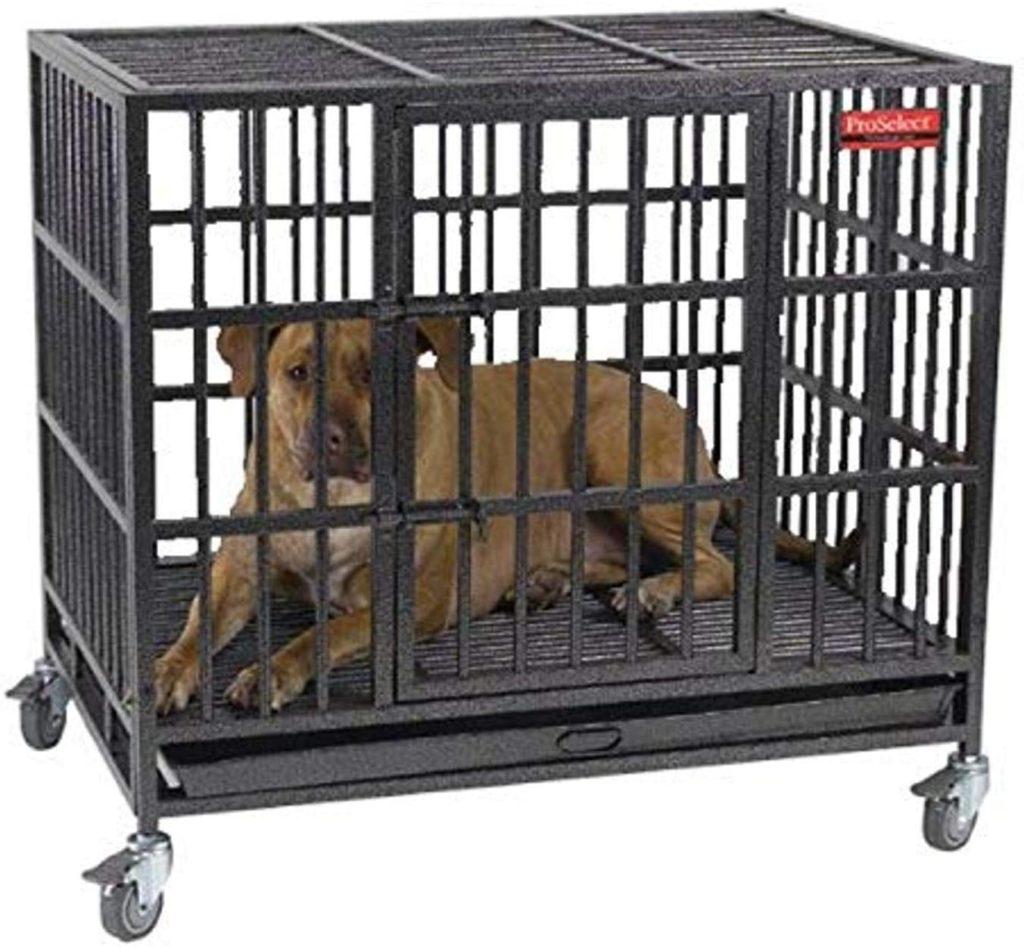 ProSelect Empire Indestructible Dog Crate