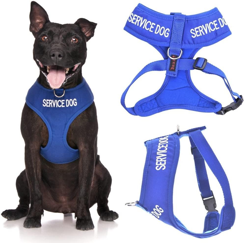 Dexil Limited Vest Dog Harness