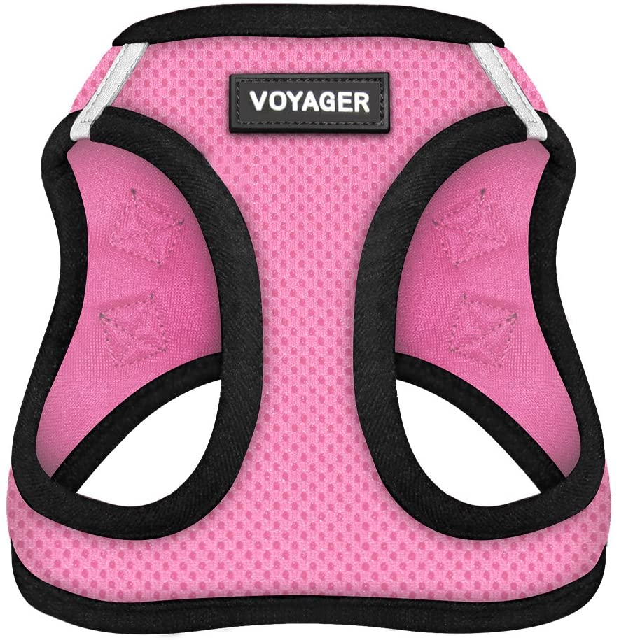 Voyager Step-In Air Dog Harness