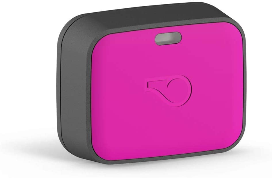 Whistle GO Explorer Health and Location Dog GPS Tracker