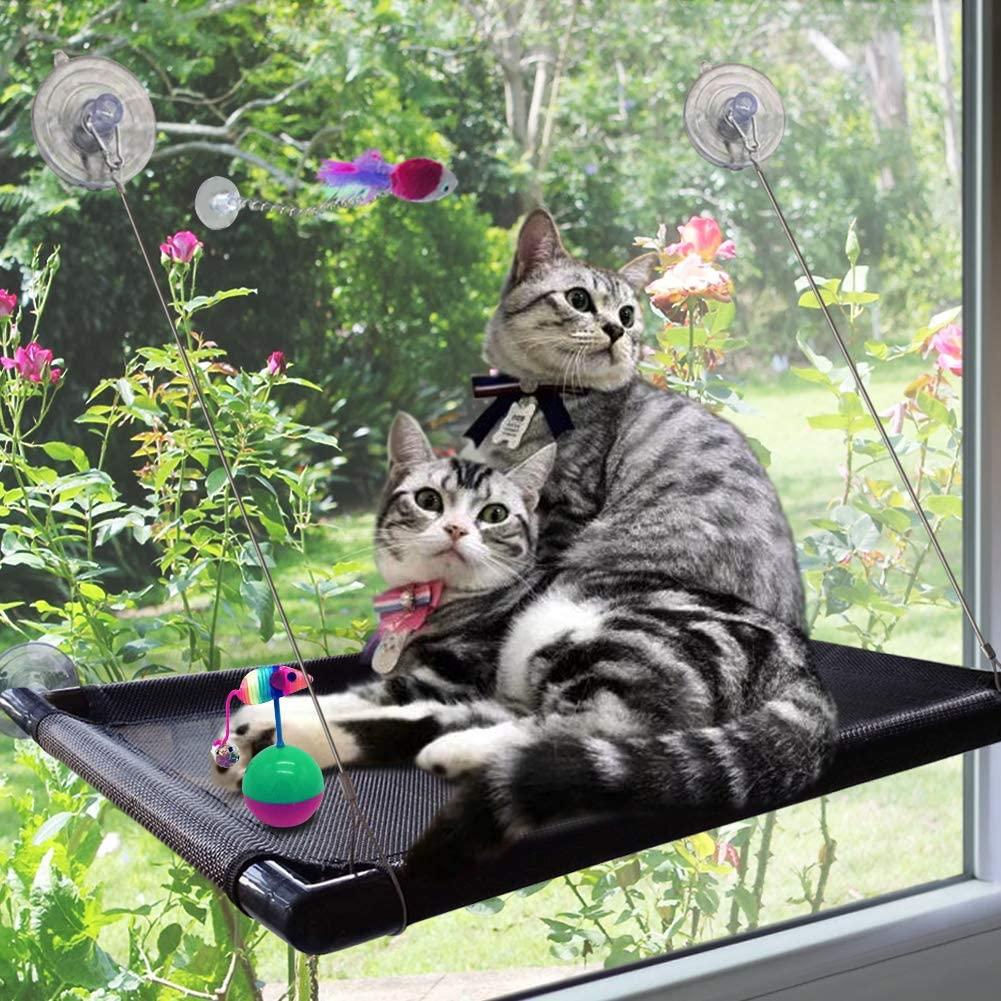 Raytops Cat Perch