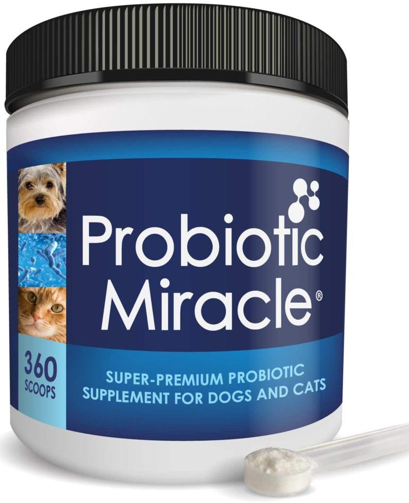 Nusentia Probiotic Miracle Powder