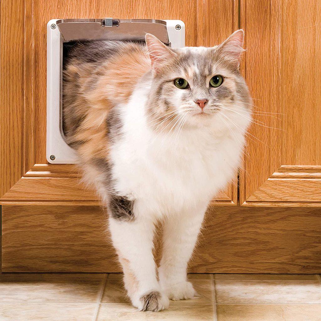 PetSafe Interior Cat Door