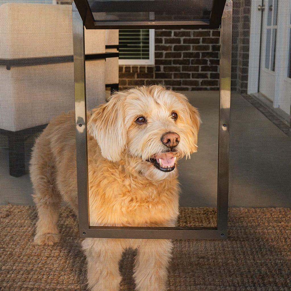 PetSafe Pet Screen Cat Door