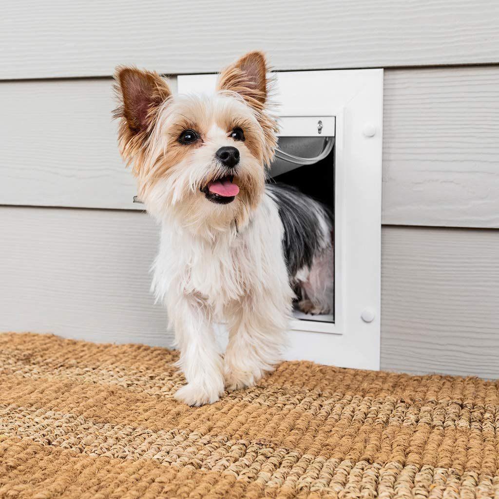 PetSafe Wall Entry Cat Door