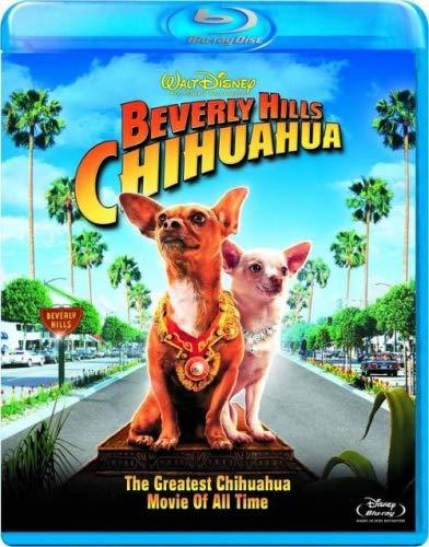 Beverly Hills Chihuahua Best Dog Movie