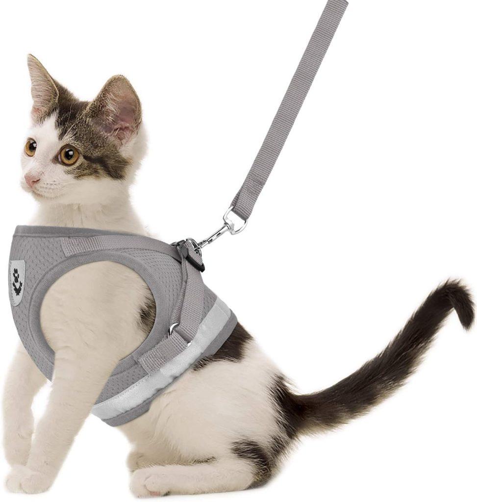 GAUTERF Cat Harness