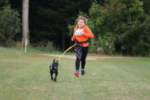 Running leashes allow you and your dog to exercise safely