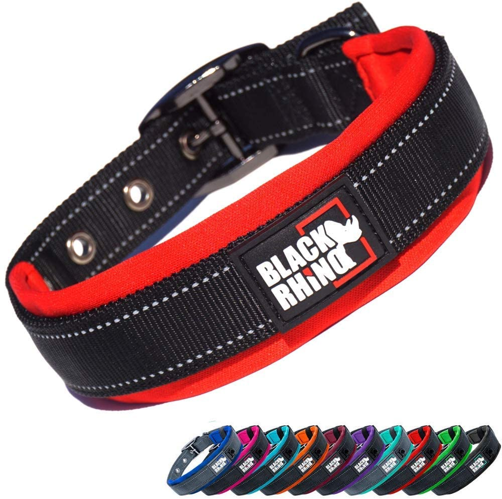 Black Rhino Dog Collar