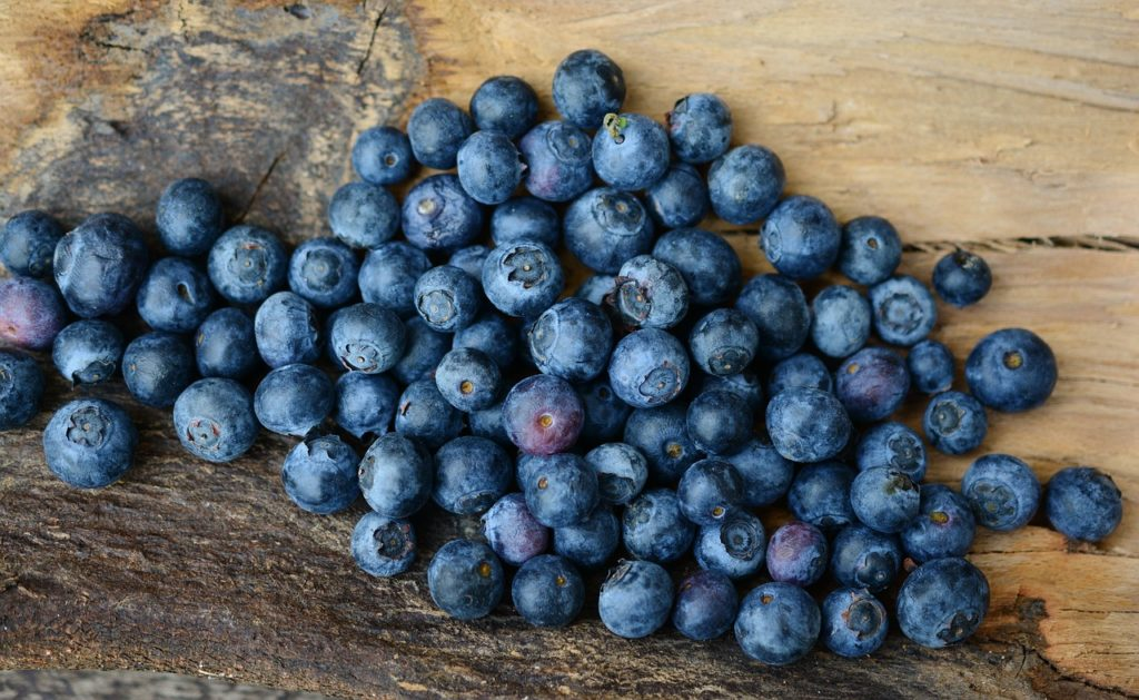 When dogs eat blueberries, they get multiple antioxidants