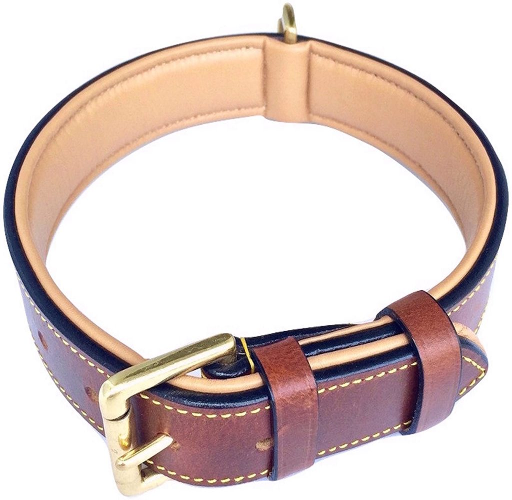 SoftTouch Collar